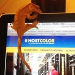 Hostcolor.com Adds Network Performance Monitoring To Its Colocation And Dedicated Hosting Solutions